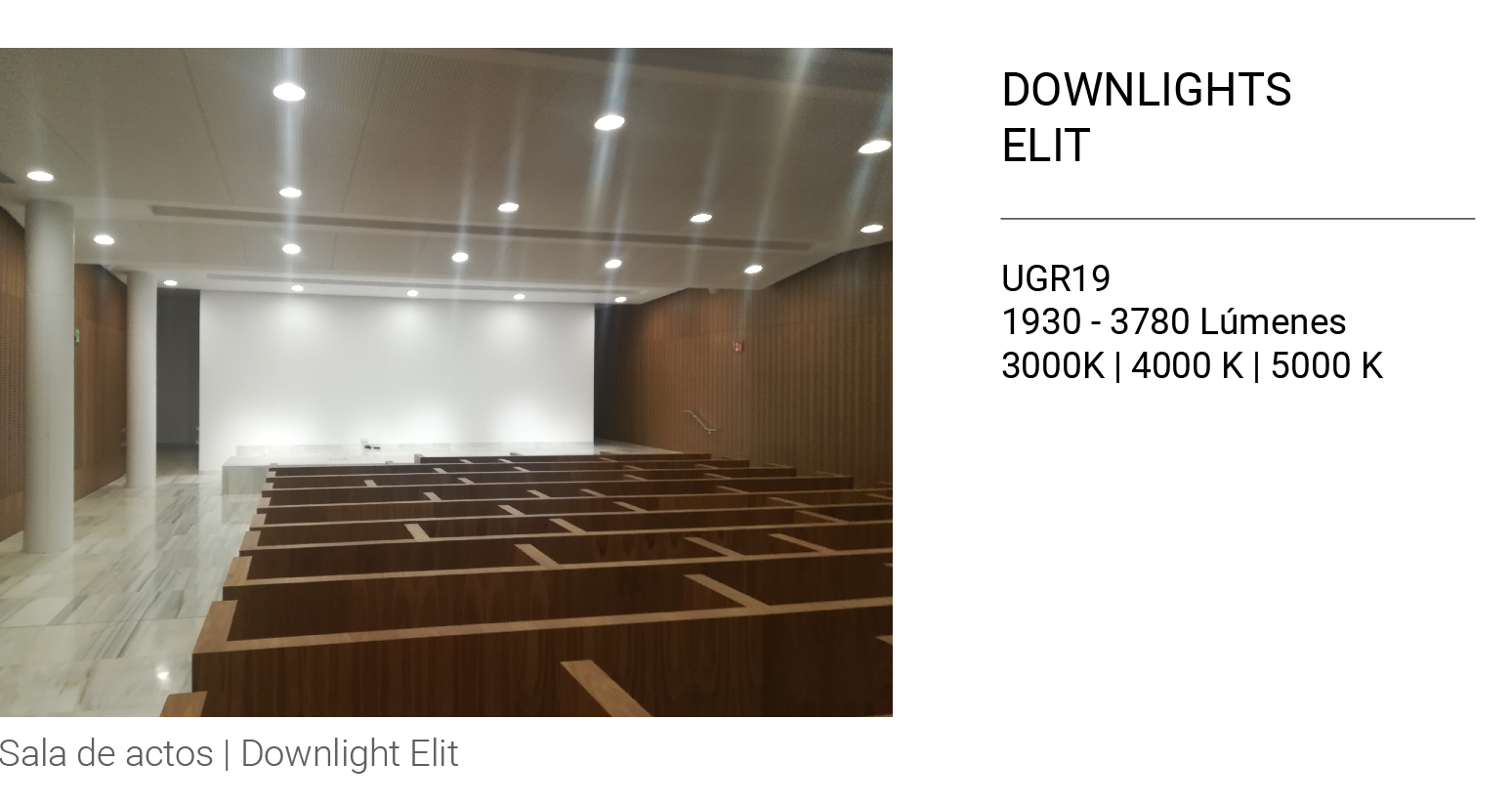 Downlight ELIT